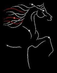 Regal Arabian